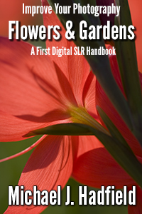 Flower and garden photography Cover